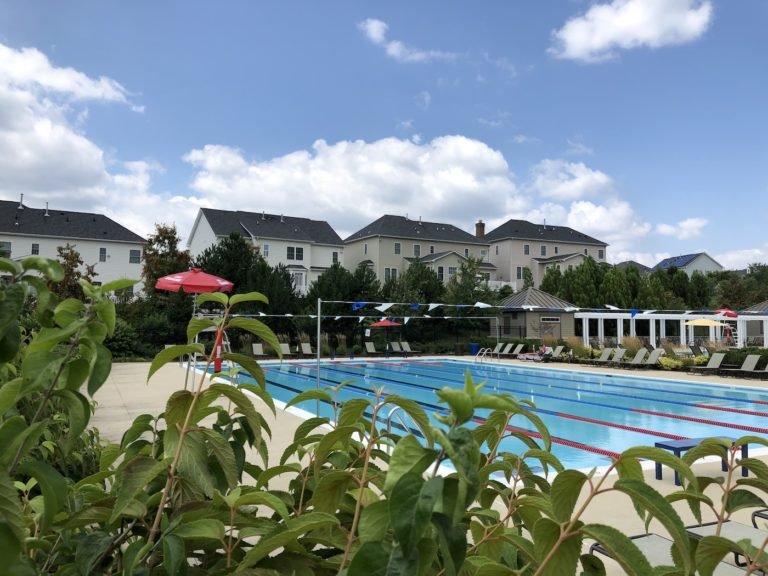 Read more about the article Poplar Run in Silver Spring – Picture gallery